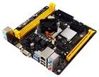 Moederbord + CPU Biostar A68N-5600